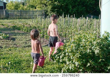 Children At Summer Irrigate Garden Helping For Parents Doing Work.  Boy And Little Girl Going To Wat