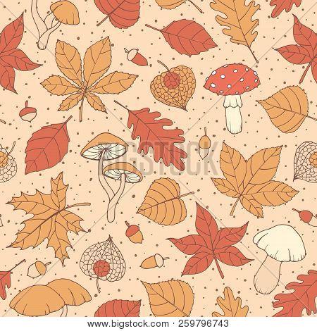 Vector Autumn Seamless Pattern With Oak, Poplar, Beech, Maple, Aspen And Horse Chestnut Leaves, Mush