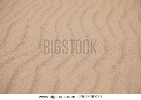 Ripples left by the sea on a sand beach. Background with shallow depth of field.