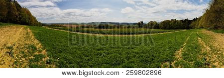 Landscape Panorama With Field And Forest