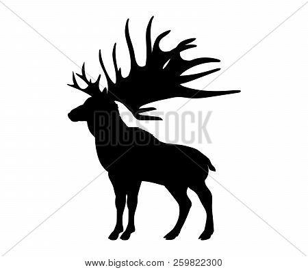 Megaloceros Giant Reindeer Silhouette Extinct Mammalian Animal. Vector Illustration