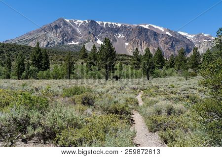 Hiking Trail Leads To Parker Lake In June Lake California In The Eastern Sierra Nevada Mountains. Le