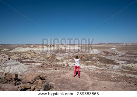 Female Traveler Stands On A Rock In Petrified Forest National Park In Arizona. Concept For Solo Fema