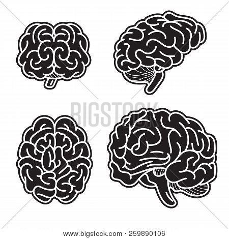 Brain Mind Icon Set. Simple Set Of Brain Mind Vector Icons For Web Design On White Background