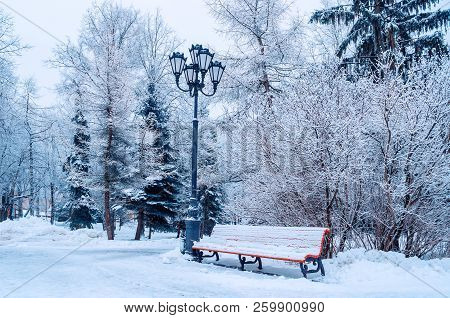 Winter landscape with falling snowflakes - bench covered with snow among frosty winter trees in the winter city park. Winter snowy scene