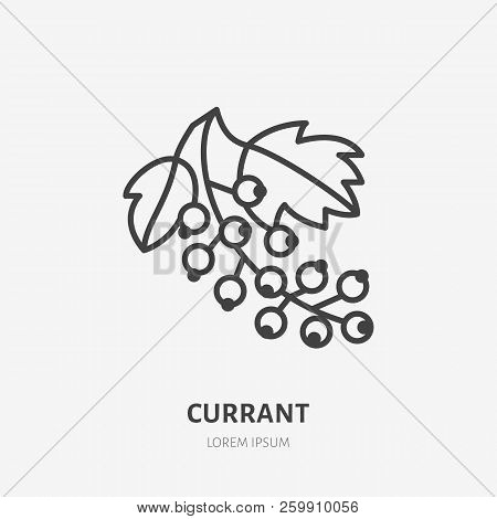 Red Currant Flat Line Icon, Forest Berry Sign, Healthy Food Logo. Illustration Of Black Currants For