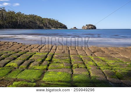 Tessellated Pavement In Pirates Bay.