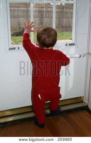 Toddler Looking Out Window 001