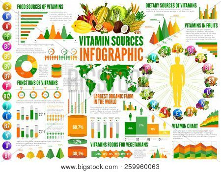 Vitamin Sources Infographics, Nutrition Statistical Charts And Diagrams. A, B, K, Vitamins In Food F