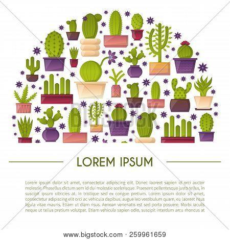 Vector Cartoon House Plant Cactus Background