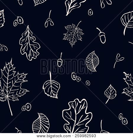 Seamless Floral Pattern With Oak, Maple, Birch, Elm Leaves And Seeds For Fabric Or Wrapping Design.