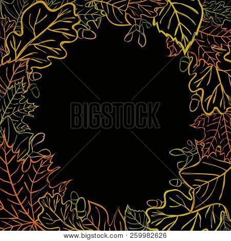 Vector Round Design Element With Maple, Birch, Oak, Acorn, Tulip Tree Leaves, Seeds And Acorns For B
