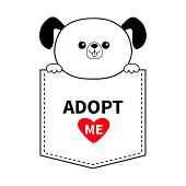 Adopt me. Dog in the pocket. Holding paws. Red heart. Cute cartoon animals. Puppy pooch character. Dash line. Pet animal collection. T-shirt design. Baby background. Flat design Vector illustration poster