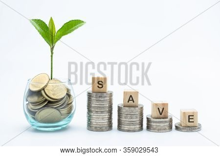 Seedlings In Glass Bottles With Coins And The Coin Ladder Has The Word Save Placed On Coins. The Con