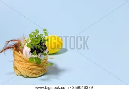 Young Greens Grows In An Egg Shell Standing In A Nest. A Nest Of Pasta Stands On A Light Background.