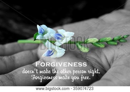Inspirational Quote - Forgiveness, Does Not Make The Other Person Right. Forgiveness Make You Free.