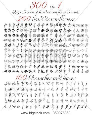 Huge Collection Of 300 Hand-drawn Floral Elements. Big Collection Of 200 Hand-drawn Flowers And 100