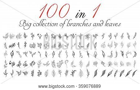 Big Collection Of 100 Hand-drawn Branches And Leaves. Big Floral Botanical Leaves And Brunches Set I
