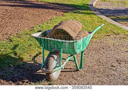 Stack Of Rolled Grass Sod For Lawns And Gardening In Green Garden Wheelbarrow Outside. Spring Garden