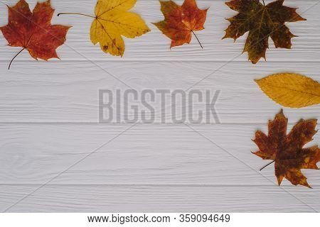 Background Texture With Old Wooden Table And Yellow Autumnal Leaves. Autumn Maple Leaves On Wooden B