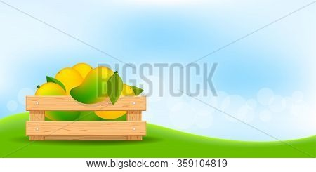 Mango In Wood Crate, Wood Crate Of Ripe Mango And Copy Space For Advertisement Sale Slogan, Mango Fr