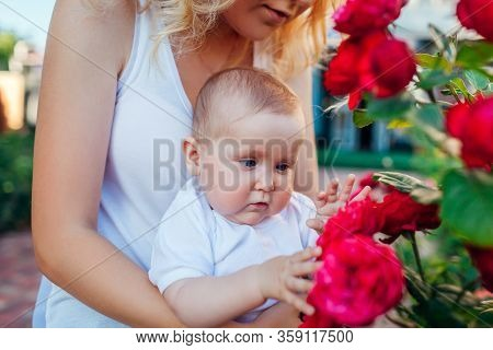 Mothers Day. Young Woman Hugging Baby Gir In Rose Garden. Infant Looking At Flowers Touching Them Di