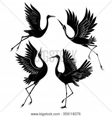 Silhouette Or Shadow Black Ink Icons Of Crane Birds Or Herons Flying And Standing Set. Group Of Stor