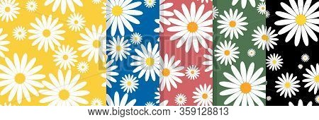 Set Of White Daisies And White Circle Seamless Vector Pattern. Daisy In Doodle Style. Tiny Flowers S