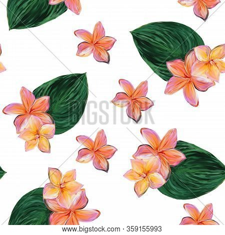 Frangipani Plumeria Tropical Flowers. Seamless White Pattern Background. Tropical Floral Summer Seam