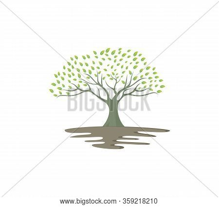 Decorative Tree. Tree Logo Template. Tree Icon Design - Vector, Tree Icon Concept Of A Stylized Tree