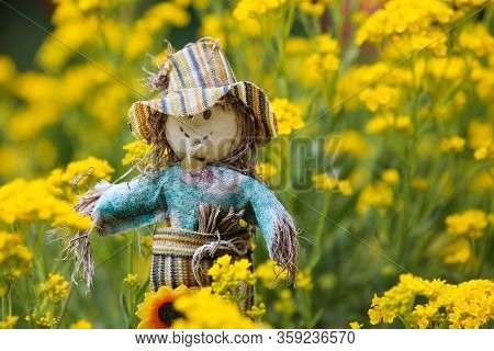 Toy Smiling Scarecrow With A Dandelion Flower In Hand On A Blurred Background Of Green Grass