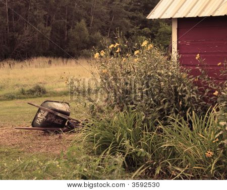 Wheelbarrow And Shed In Sepia
