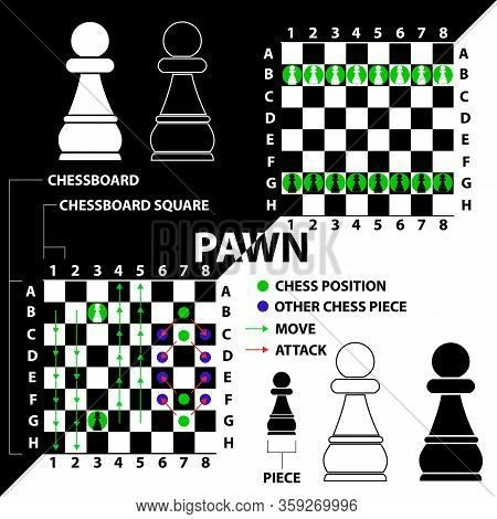 Pawn. Chess Piece Made In The Form Of Illustrations And Icons. Black And White Pawn With A Descripti