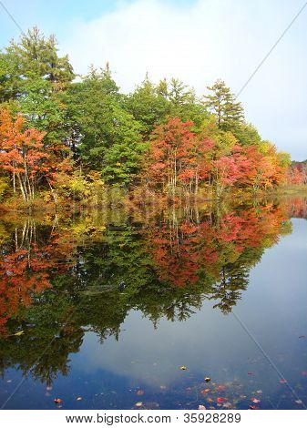 fall foliage in new hampshire 2