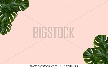 Tropical Island. Flower And Palm Wallpaper. Vector Jungle Illustration. Exotic Tropical Jungle Rainf