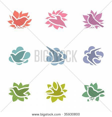 Collection of multicolored birds. Vector logo template set. Elements for design. poster