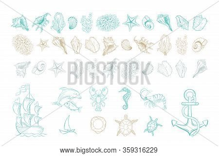 Marine Line Art Vector Icons Of Sea Shells, Anchor And Mollusks. Hand Drawn Hatching Design Set Of M