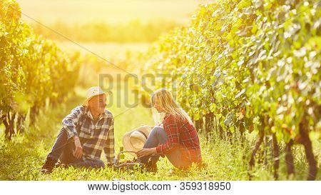 Couple sitting at picnic with wine in vineyard in summer
