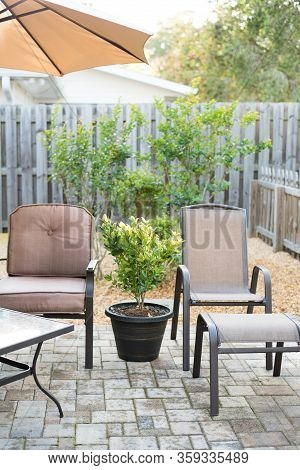 Patio Chairs With Blooming Shrubs And Rock Garden Around The Patio