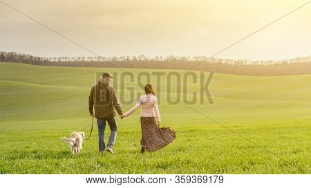 Back view of couple walking cute dog on spring field
