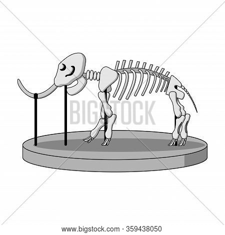 Cartoon Skeleton Of Mammoth On Paleontology In Museum Of Prehistory. White Background Isolated Stock