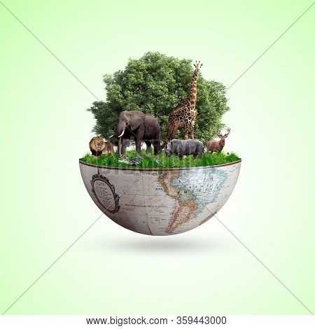 World Wildlife By Animal,s On Earth, Wildlife Concept, Environment Day, Design, Card, Poster, Symbol