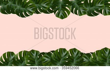 Tropical Leaves. Jungle Background Flower And Palm. Vector Jungle Illustration. Exotic Tropical Jung