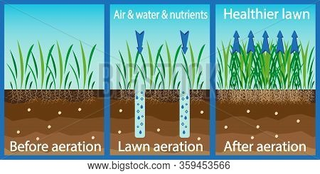 Aeration Of The Lawn. Enrichment With Oxygen Water And Nutrients To Improve Lawn Growth. Before And