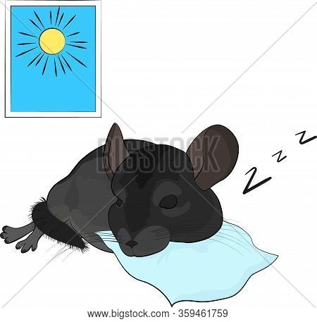 Cartoon Chinchilla Sleeps At Sunny Day On Blue Pillow. Vector Illustration Of Cute Gray Rodent With