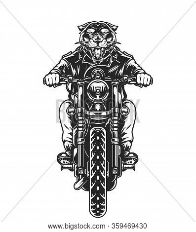 Vintage Biker With Ferocious Panther Head Riding Motorcycle In Monochrome Style Isolated Vector Illu