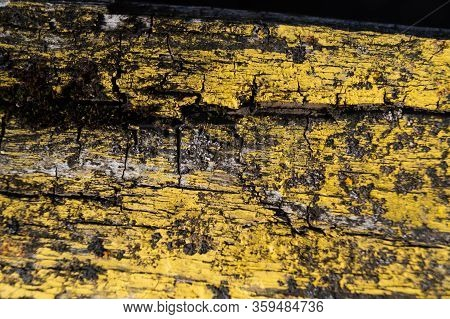 A Part Of Old Yellow Wooden Fence. The Yellow Paint On Wood Is Old And Cracked. Perfect Painted Wood
