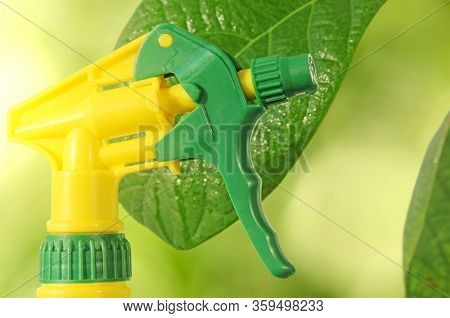 Houseplant Care Concept. Spray Bottle On Green Leaves Of Avocado Plant Background.