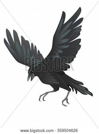 Black Raven Bird Cartoon Crow Design Flat Vector Animal Illustration Isolated On White Background