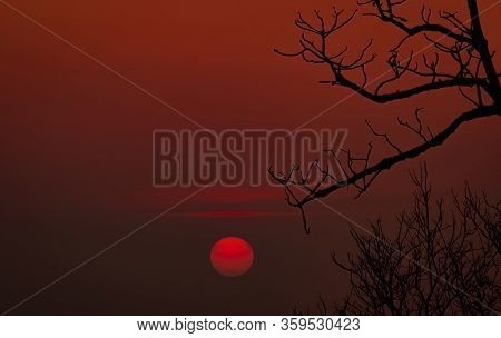 Beautiful Silhouette Leafless Tree And Red Sunset Sky. Romantic And Peaceful Scene Of Sun, And Red S